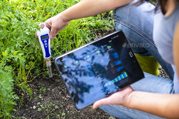 PH meter tester in soil. Measure soil with digital device and tablet. Woman farmer in a garden. - Stock Photo - Images