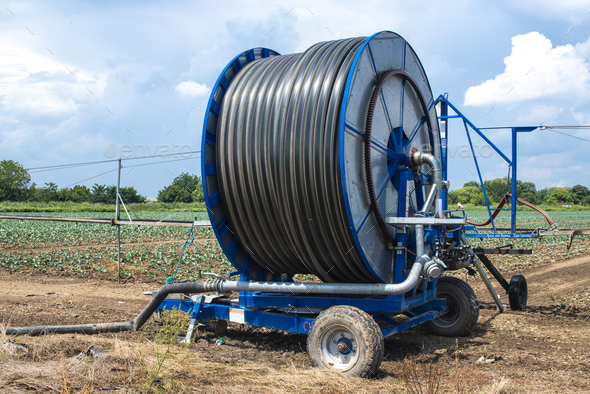 Irrigation sprinkler and rolled hose.  Watering concept. - Stock Photo - Images
