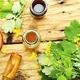 Celandine in herbal medicine - PhotoDune Item for Sale