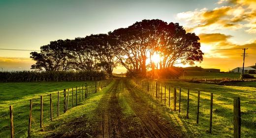 VILLAGE AND FARMING