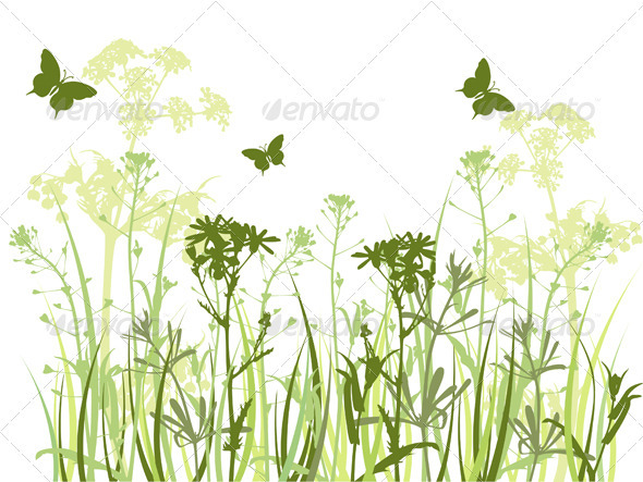 Green Background with Grass and Butterflies - Flowers & Plants Nature