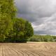 Rural landscape near Bornerbroek - PhotoDune Item for Sale