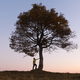 Silhouette of tourist under majestic tree - PhotoDune Item for Sale