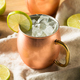Homemade Vodka Moscow Mule - PhotoDune Item for Sale