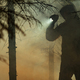Men with Flashlight During Forest Wildfire Rescue Mission - PhotoDune Item for Sale