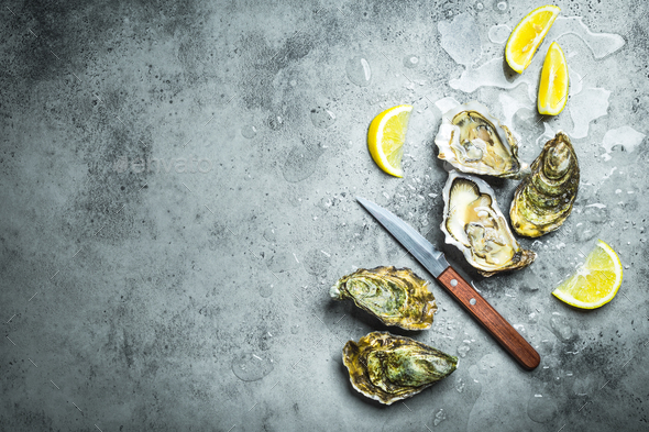 Fresh oysters on ice - Stock Photo - Images