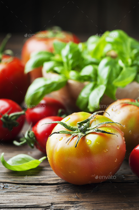 Green basil and red sweet tomato - Stock Photo - Images