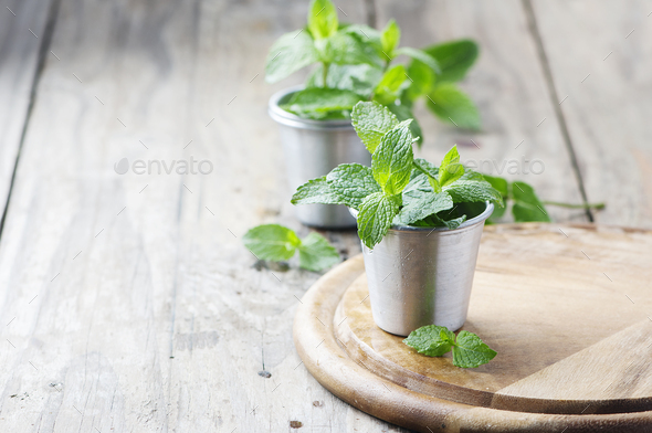 Green fresh mint on the wooden table - Stock Photo - Images