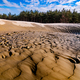 Therapeutic mud pool near coniferous forest - PhotoDune Item for Sale