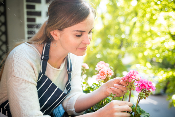 Woman takes care of flowers on balcony, home gardening - Stock Photo - Images