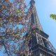 Eiffel Tower on blue sky background with beautiful blooming trees - PhotoDune Item for Sale