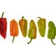 pepper vegetation - PhotoDune Item for Sale