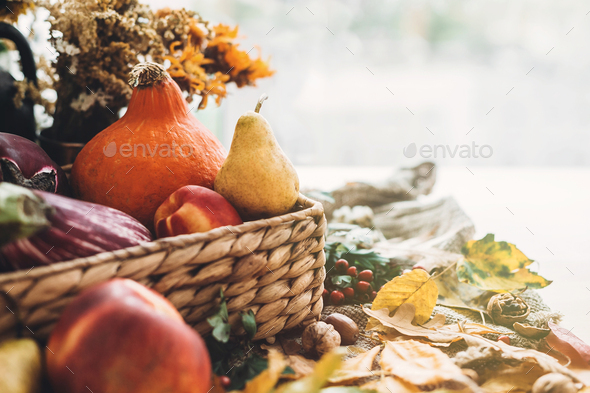 Pumpkin and vegetables in basket and colorful leaves - Stock Photo - Images