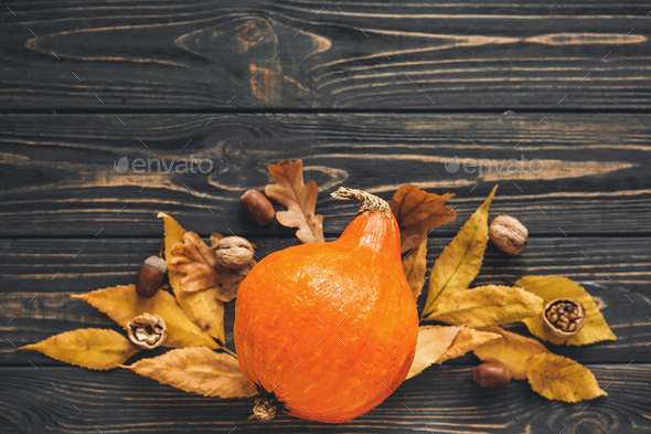 Beautiful pumpkin with bright autumn leaves, acorns, nuts on wooden rustic table - Stock Photo - Images