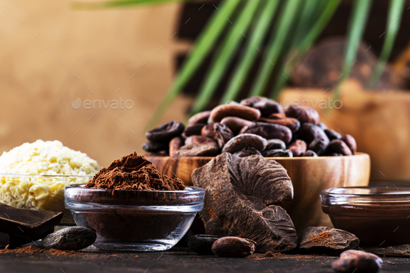 Various organic cocoa products - Stock Photo - Images