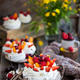 Pavlova meringue cake - PhotoDune Item for Sale