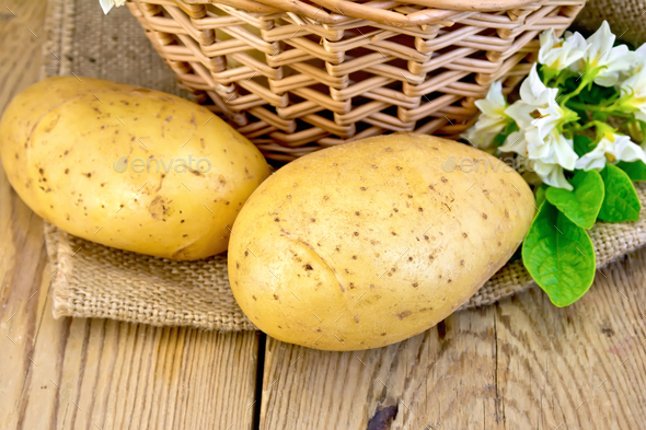 Potatoes yellow with flower and basket on sackcloth - Stock Photo - Images