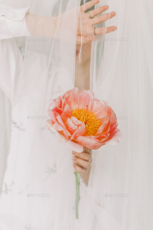 Woman behind veil holding pink peony. Stylish girl under tulle gently holding peony flower - Stock Photo - Images