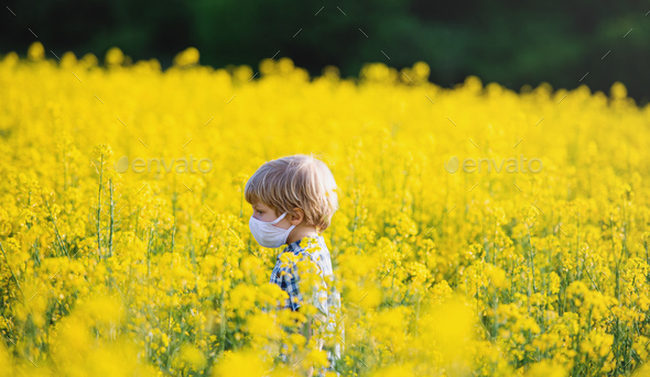 Side view of small boy with face mask standing in nature in rapeseed field - Stock Photo - Images