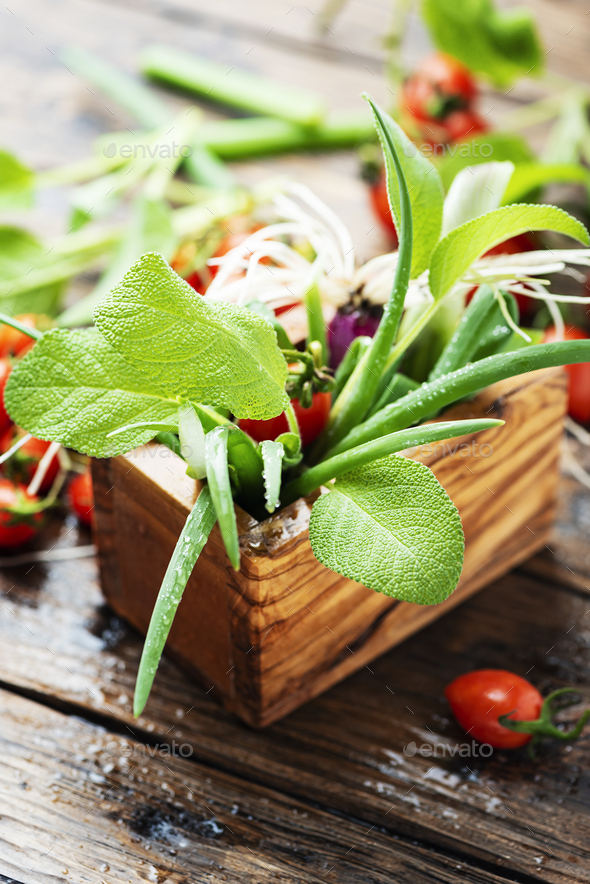 Concept of health vegan food - Stock Photo - Images