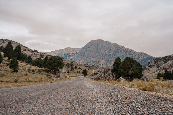 Road raising in to the mountains - Stock Photo - Images