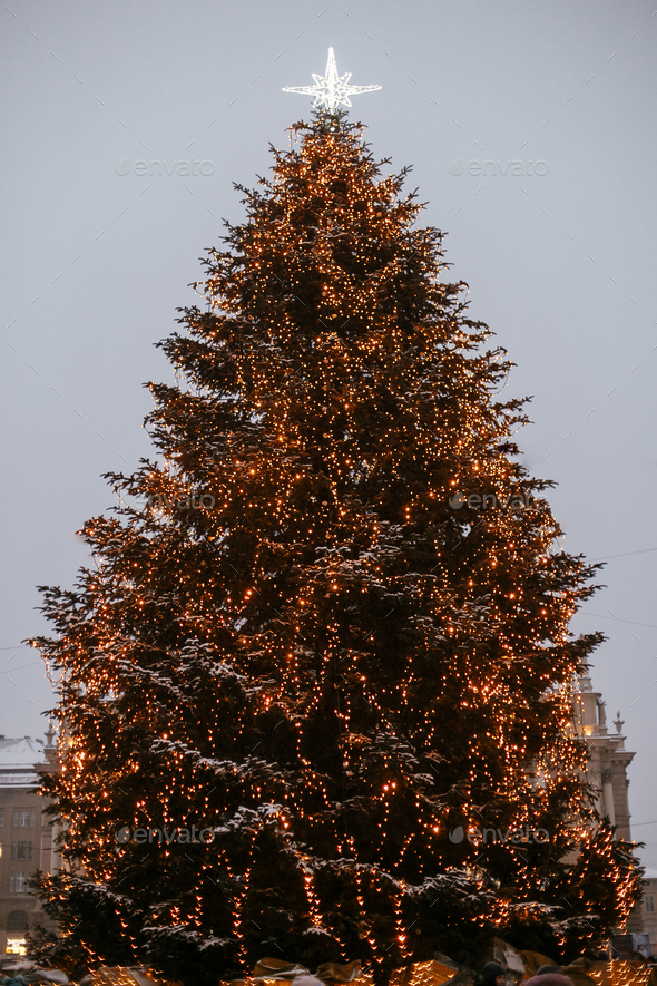 Stylish christmas tree with golden lights and illuminated star on top in european city center - Stock Photo - Images