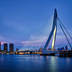 Erasmus Bridge, Rotterdam, Netherlands - PhotoDune Item for Sale