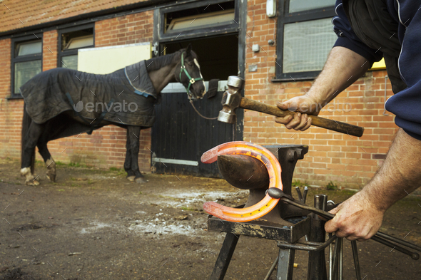A farrier using tongs and hammer to hold and shape a red glowing heated metal horseshoe to be - Stock Photo - Images