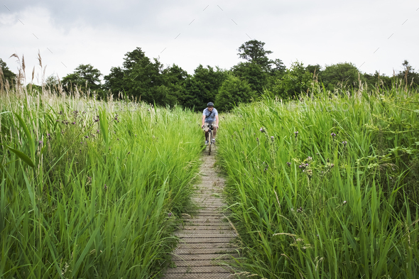 Woman cycling along path through tall grass. - Stock Photo - Images