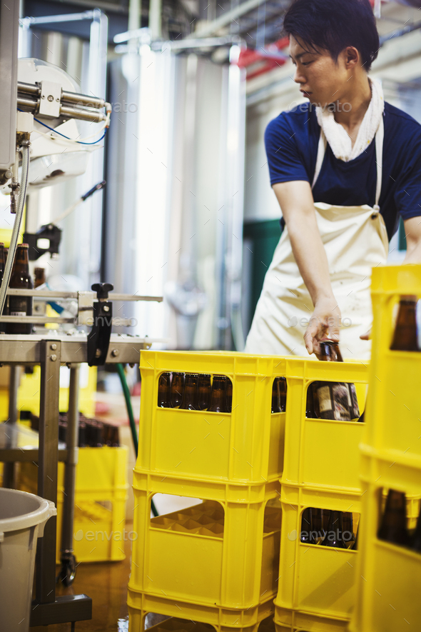 Worker placing beer bottles into yellow crates in a brewery. - Stock Photo - Images