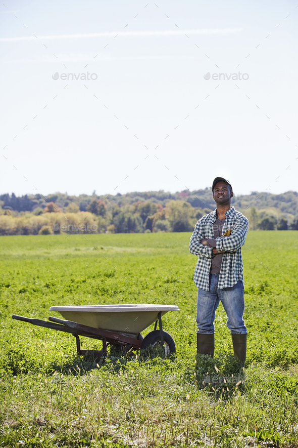 A young man in working clothes standing in a crop field with arms folded next to a wheelbarrow. - Stock Photo - Images