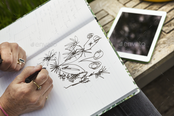 High angle view of a woman sitting on a bench, drawing flowers in a sketchbook, a digital tablet. - Stock Photo - Images