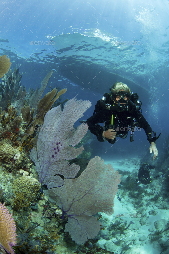 Female technical diver wearing a rebreather swimming over a coral reef. - Stock Photo - Images