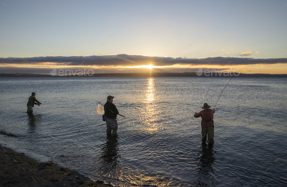 Two fly fishermen cast for searun coastal cutthroat trout and salmon at sunrise with their guide - Stock Photo - Images