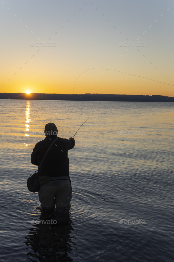 A silhouette view of a fly fisherman casting for salmon and searun coastal cutthroat trout from a - Stock Photo - Images