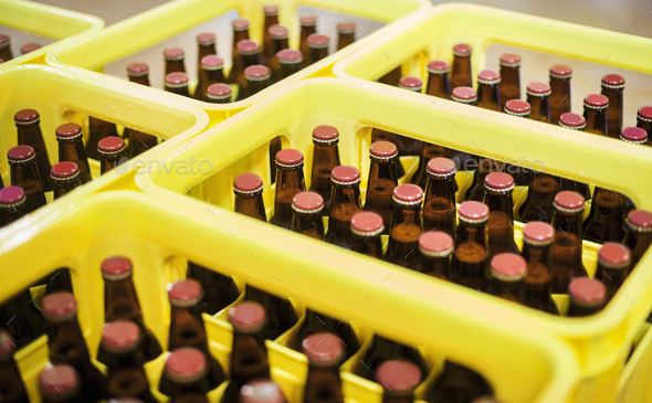 Yellow plastic crates with beer bottles in a brewery. - Stock Photo - Images