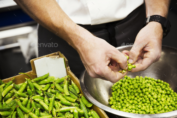 Close up of a chef shelling fresh green peas. - Stock Photo - Images