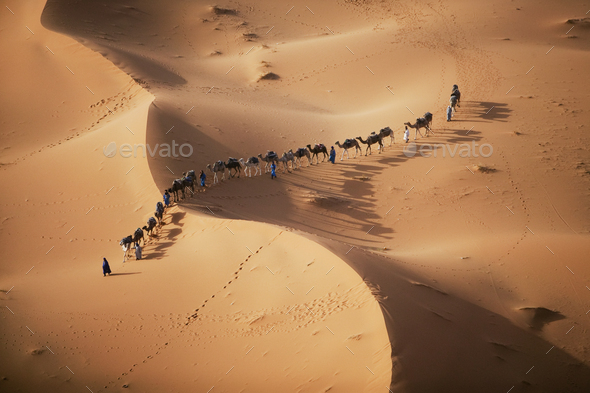 The setting sun over the desert makes a enchanting shadow as a caravan of camel merchants winds - Stock Photo - Images
