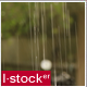 Rain In Garden - VideoHive Item for Sale