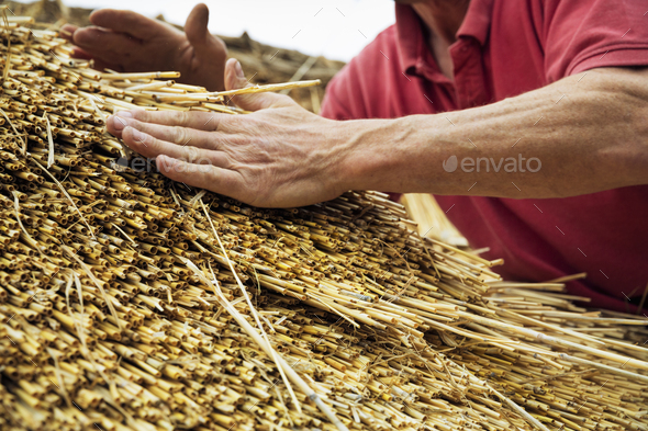 Close up of a man thatching a roof, layering the straw. - Stock Photo - Images