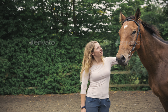 Woman patting a large bay thoroughbred horse horse in a paddock. - Stock Photo - Images