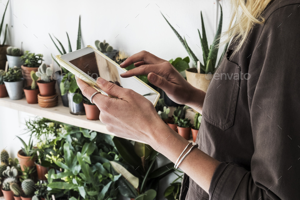 Close up of female owner of plant shop holding digital tablet, a selection of plants on wooden - Stock Photo - Images