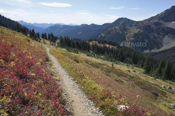 Hiking trail in the North Cascades, Pacific Crest Trail through pristine alpine wilderness, autumn, - Stock Photo - Images