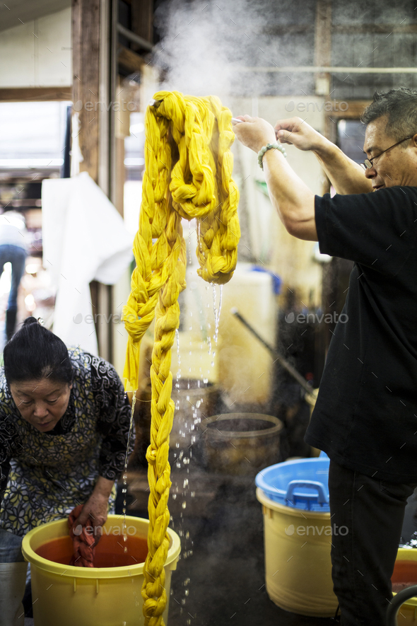 Japanese man standing in a textile plant dye workshop, holding aloft piece of freshly dyed bright - Stock Photo - Images