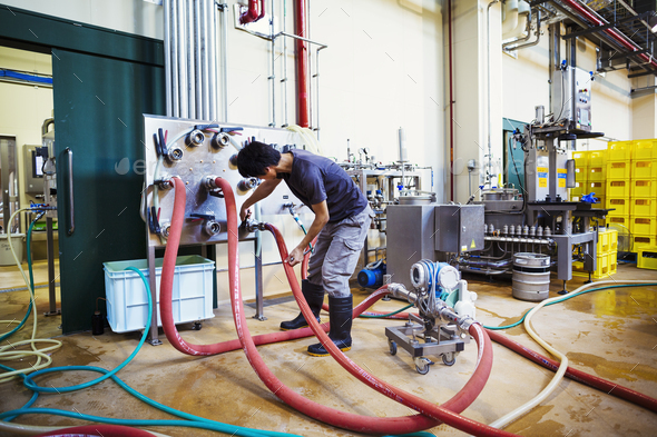 Man working in a brewery, connecting hoses to a metal beer tank. - Stock Photo - Images