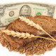 Slice bread with money - PhotoDune Item for Sale