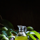 Walnut oil, vintage style, selective focus - PhotoDune Item for Sale