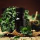 Organic essential oregano oil - PhotoDune Item for Sale
