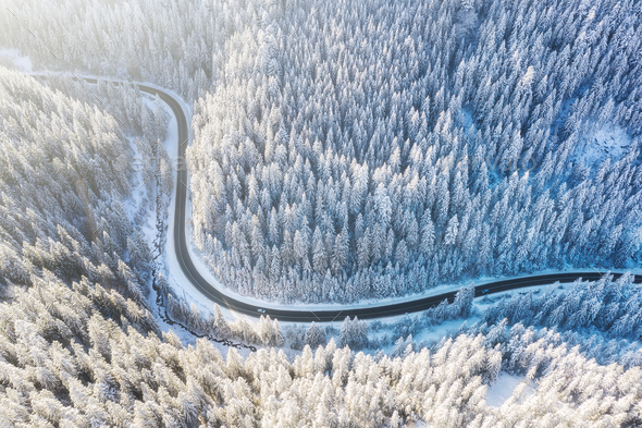 Road and winter forest from air. Winter aerial landscape. View from drone - Stock Photo - Images