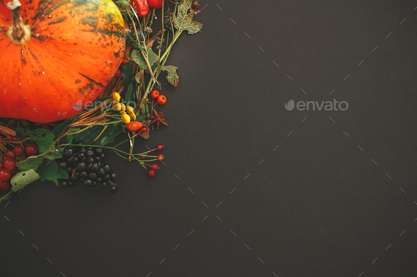 Autumn flat lay. Pumpkin in autumn wreath of fall leaves - Stock Photo - Images